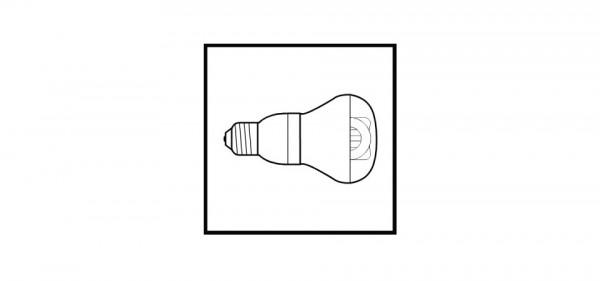 11w Compact Fluoro Globe